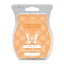 Autumn Sunset Scentsy Bar