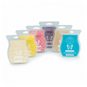 6 Scentsy Bars Pack