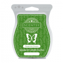 Peppermint Dreams Scentsy Bar