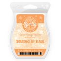 Spiced Orange Harvest Scentsy Bar