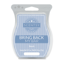 Beach Scentsy Bar