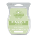 Simply Irresistible Scentsy Bar