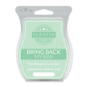 Pear Blossom & Cucumber Scentsy Bar