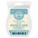 Hawaiian Paradise Scentsy Bar