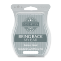 Business Casual Scentsy Bar
