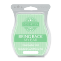 Marshmallow Mint Scentsy Bar
