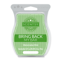 Watermelon Mint Scentsy Bar
