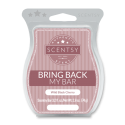 Wild Black Cherry Scentsy Bar