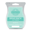 Baja Breeze Scentsy Bar