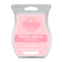 Grapefruit Blossom Scentsy Bar