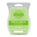 Lime Sublime Scentsy Bar