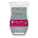 Juniper Berry Scentsy Brick
