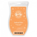 Sunkissed Citrus Scentsy Brick