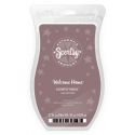 Welcome Home Scentsy Brick