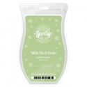White Tea & Cactus Scentsy Brick