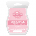 Simply Rose Scentsy Bar