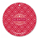 Cinnamon Bear Scentsy Scent Circle