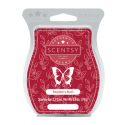 Raspberry Bush Scentsy Bar