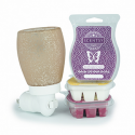 Scentsy System - $20 Warmer