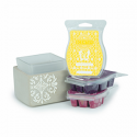 Scentsy System - $30 Warmer