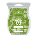 Sea Salt & Avocado Scentsy Bar