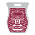 Snowberry Scentsy Bar