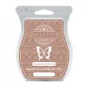 Chocolate Coconut Cream Scentsy Bar