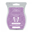 Cotton Candy Cookie Scentsy Bar