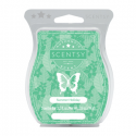 Summer Holiday Scentsy Bar