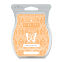 Dewy or Don't We Scentsy Bar