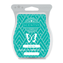 Jet, Set, Go! Scentsy Bar