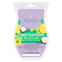 Pineapple Coconut Vanilla Scentsy Brick