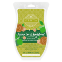 Persian Lime & Sandalwood Scentsy Brick