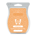 Sunkissed Citrus Scentsy Bar