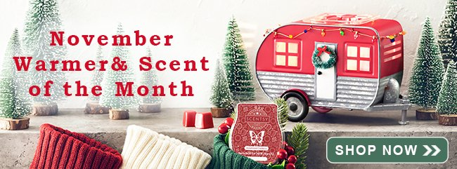 November 2019 Scentsy Warmer of the Month