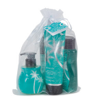 Jet, Set, Go! Scentsy Shower Gel