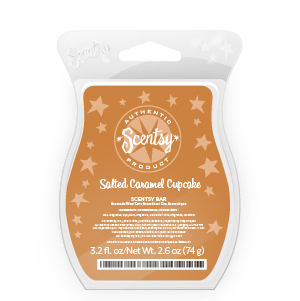 Salted Caramel Cupcake Scentsy Bar