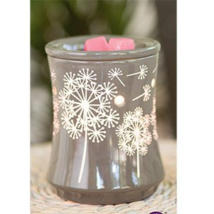 July 2015 Scentsy Warmer of the Month