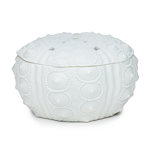 Sea Urchin Scentsy Warmer