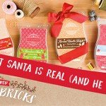 Scentsy Holiday Bricks 2016