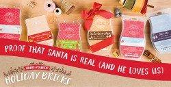 Scentsy Holiday Bricks 2016