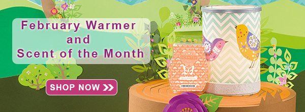 February 2017 Scentsy Warmer of the Month