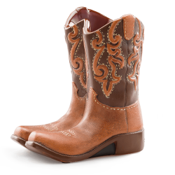 Rodeo-Scentsy-Warmer